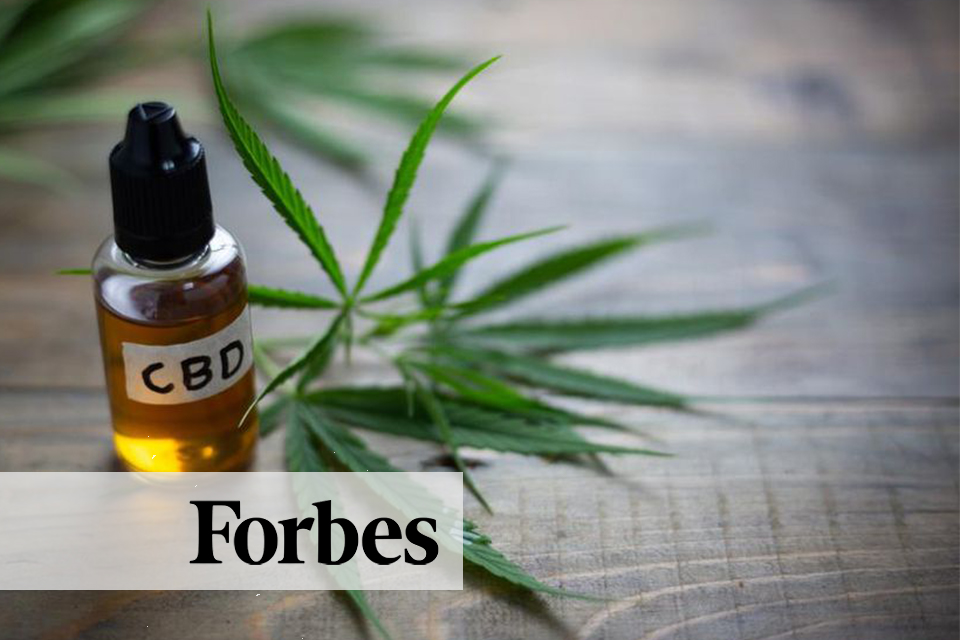 Forbes CBD Article